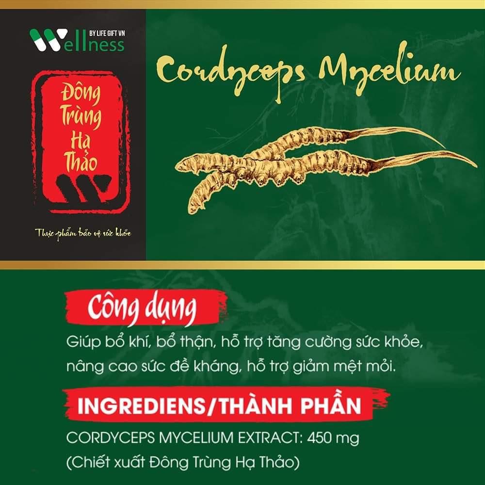 Cordcope Myceliumn